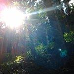2014-08-20-14-39-13_photo